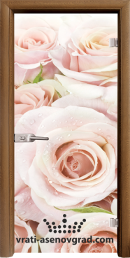 Стъклена интериорна врата Print G 13-7